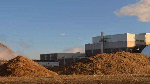 Incentivi per gli esercenti di impianti alimentati da biomasse, biogas e bioliquidi sostenibili