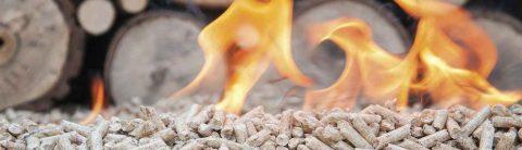 Il calore dalla natura – Riscaldiamoci con consapevolezza. Iniziativa di CECED Italia