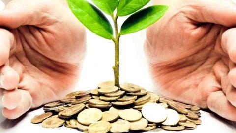 Catalogo dei sussidi ambientali dal Ministero dell'Ambiente