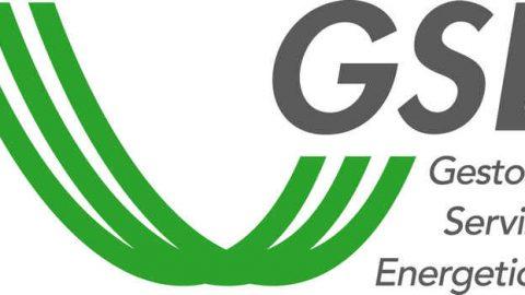 Nuova struttura organizzativa per il GSE