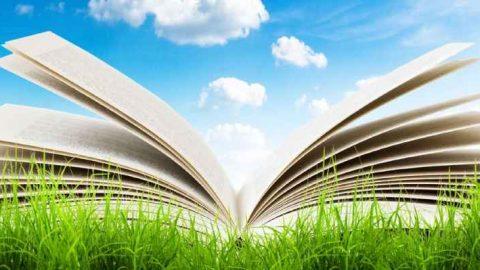 ENEA organizza la Summer School in Efficienza Energetica