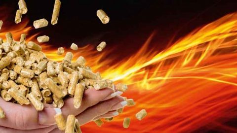 Global Wood Pellet Industry and Trade Study 2017: i pellet nel mondo