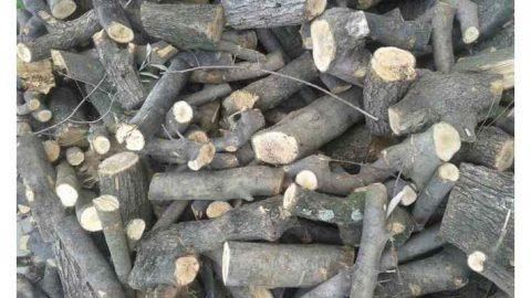 In vigore la certificazione ambientale dei generatori di calore alimentati con legna da ardere, carbone di legna e biomasse combustibili,