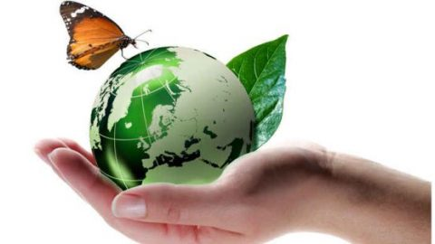 FNEE: i primi dieci finanziamenti per progetti di riqualificazione energetica