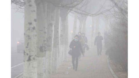 6,5 miliardi di euro per la lotta allo smog