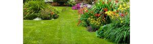 Trattamento aree verdi, Clean System.
