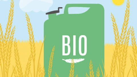 UNI EN 16214-3 2018 Produzione di biocarburanti e bioliquidi per applicazioni energetiche