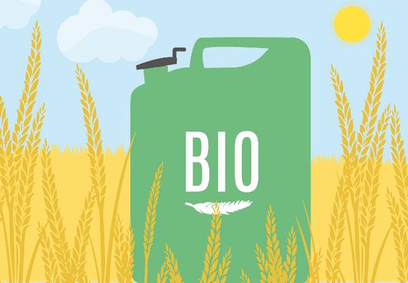 UNI EN 16214-3 2018 .Criteri di sostenibilità per la produzione di biocarburanti e bioliquidi per applicazioni energetiche