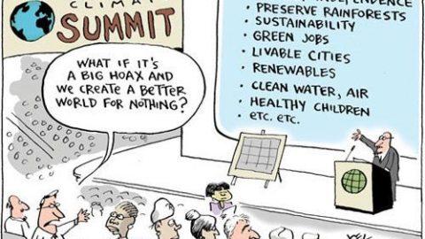 Il cambiamento climatico in una vignetta