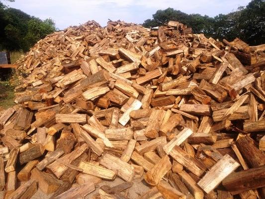 Riduzione emissione biomasse legnose - MATM e AIEL