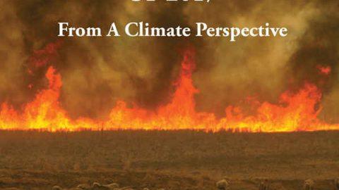 Explaining Extreme Events 2017: eventi climatici estremi e responsabilità dell'uomo