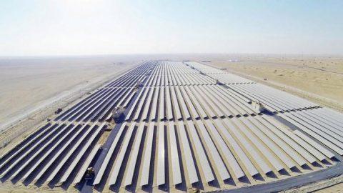 Storage da record nel deserto di Abu Dhabi