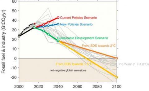 IEEFA: cinque scenari per la decarbonizzazione