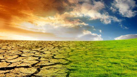 C3S: temperature in aumento a livello mondiale in settembre 2020