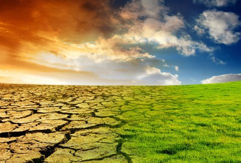 Repubblica Ceca, Estonia, Ungheria e Polonia frenano sull'obiettivo di emissioni zero per il 2050