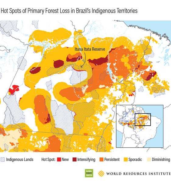 I tropici hanno perso 12 milioni di ettari di copertura arborea nel 2018