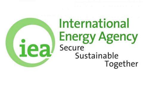 Nuove pubblicazioni IEA disponibili on line