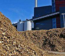 FIPER: biomassa indispensabile per PNIEC