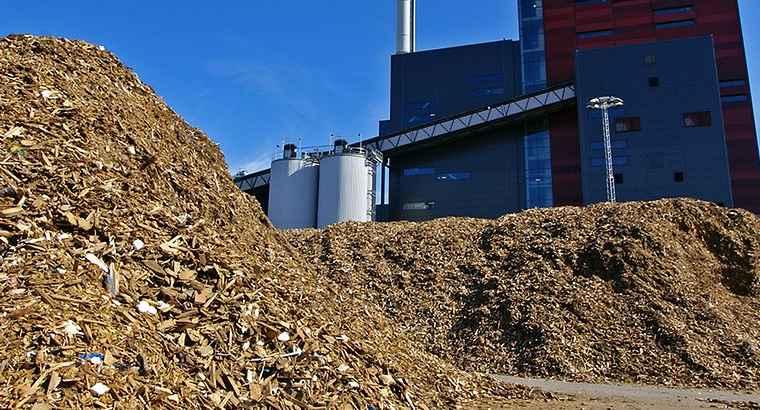 Fiper biomasse indispensabili