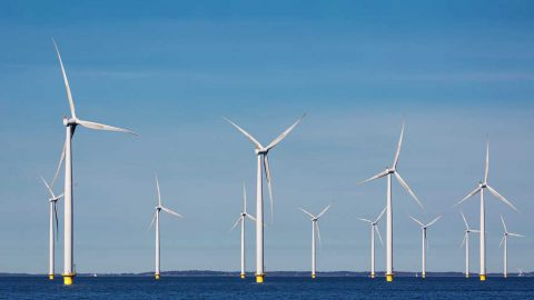 Offshore Wind Outlook 2019: grandi sviluppi per l'eolico off-shore