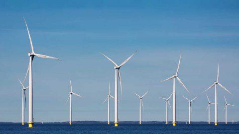 Il prezzo dell'energia eolica offshore scende di un terzo in un anno
