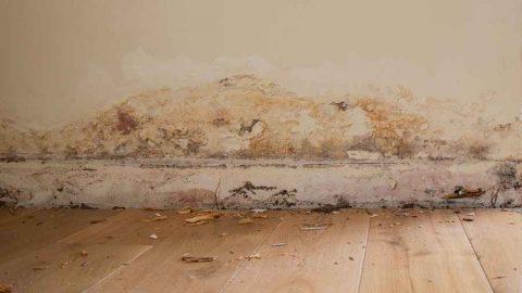 Risanamento termico di murature umide e degradate: disponibile il manuale ANIT